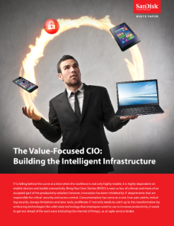 The Value-focused CIO: Building the Intelligent Infrastructure